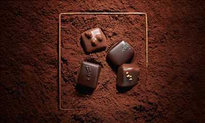 Photo n°248 : chocolatierie par YVES THURIES DAX