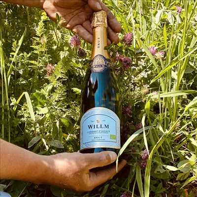 Photo Producteur de vin n°331 dans le département 67 par Alsace Willm