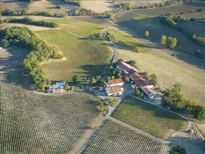 Photo Producteur de vin n°507 dans le département 81 par SAS ALBERT ET FILS - Domaine de Labarthe