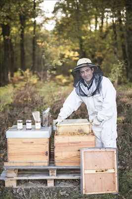 Photo Producteur de miel n°647 dans le département 33 par Joanna