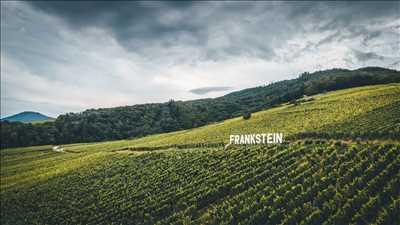 Photo Producteur de vin n°648 zone Bas Rhin par Pierre