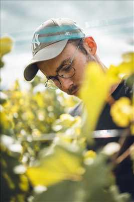 Photo Producteur de vin n°650 à Sélestat par Pierre