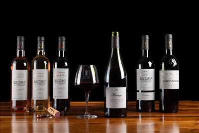 Photo Producteur de vin n°759 dans le département 11 par guillaume