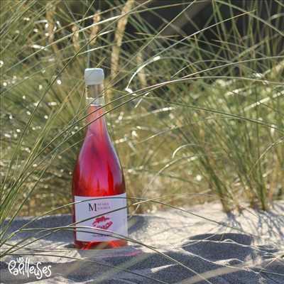 Photo Producteur de vin n°796 zone Hérault par LES PAPILLEUSES